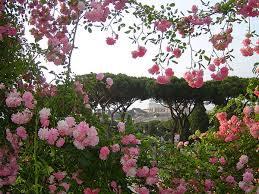 Rome: Opening of the municipal rose garden to the public